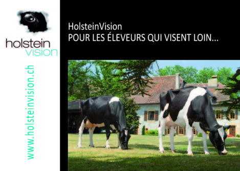 holstein_publications_brochure_holsteinvision_F