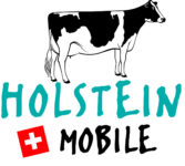 logo_holsein_mobile