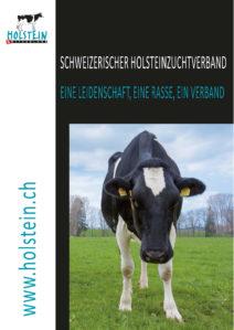 holstein_publications_brochure-holstein_d