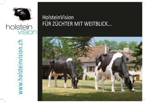 holstein_publications_brochures-et-flyers_brochure-holsteinvision_-d