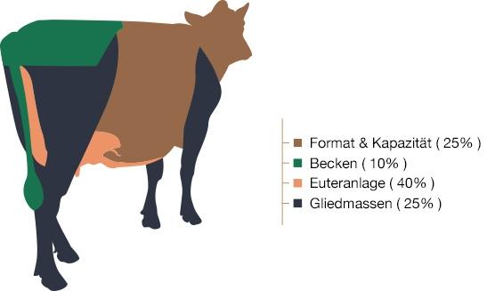schema-classification-de-547x327