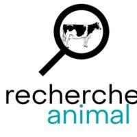 Recherche Animale
