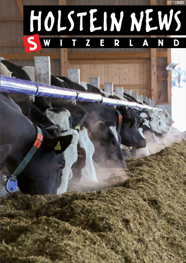 couverture holstein news mars 2021